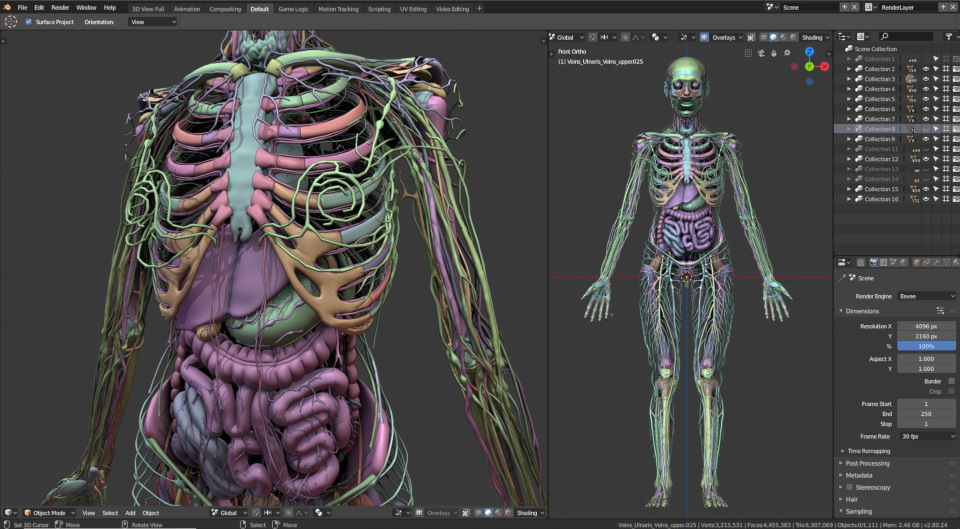 Mike Pan, Blender 2.80 for medical visualizations
